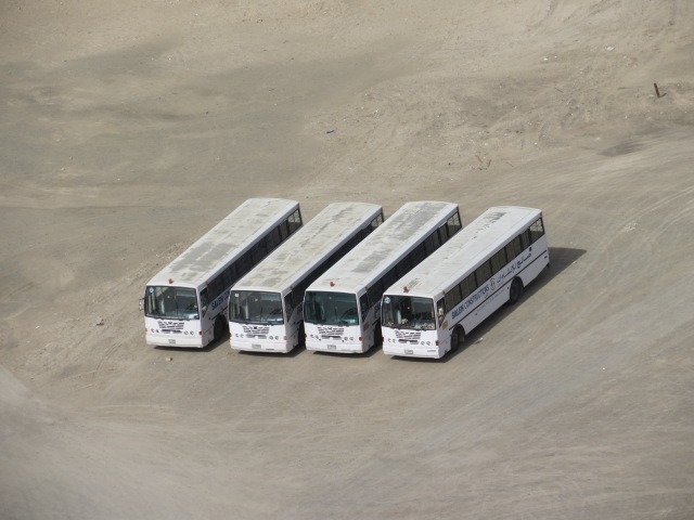 Four buses